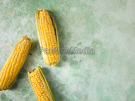 three fresh corncobs