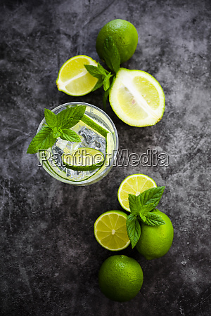 gin tonic with lemon mint and