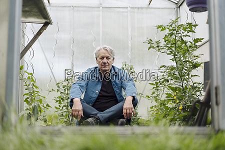 portrait of senior man sitting in