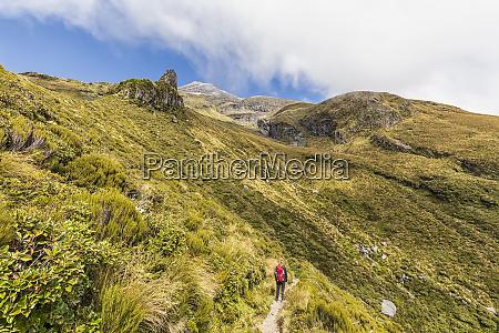 new zealand female hiker admiring surrounding