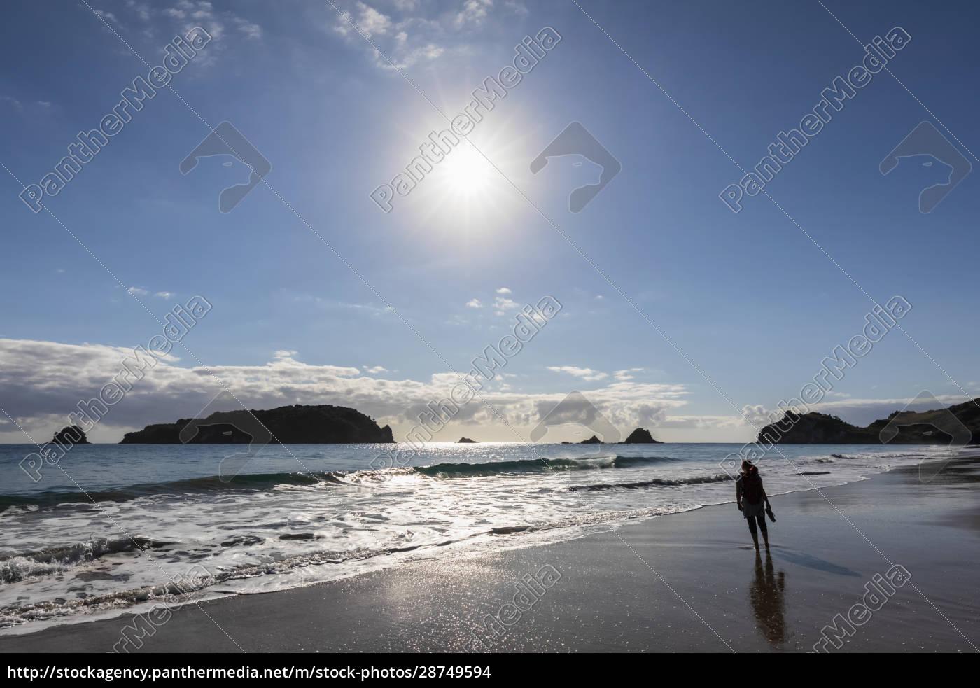 new, zealand, , north, island, , waikato, , sun - 28749594