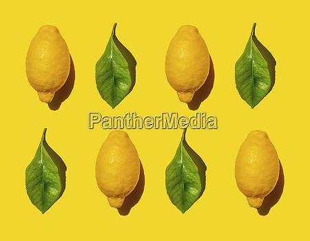 pattern of ripe lemons and green