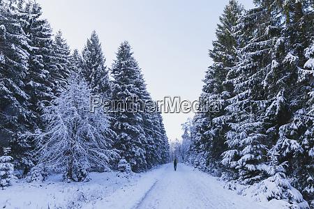 germany north rhine westafalia snow covered