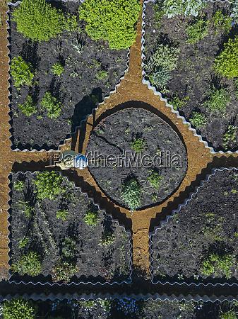 woman gardening aerial view