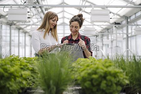 gardener and businesswoman using tablet in