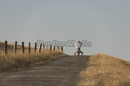 mid distance view of mature man
