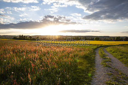 germany bavaria neusaess countryside field and