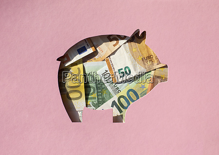 pig shaped hole filled with euro