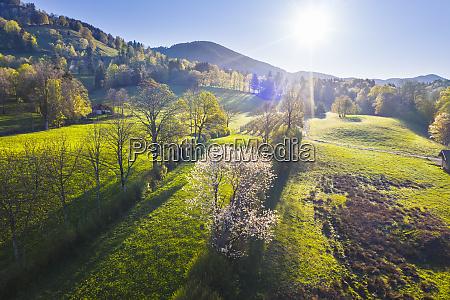 germany bavaria gaissach sun shining over