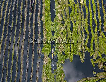 myanmar shanstate nyaungshwetownship aerial view of