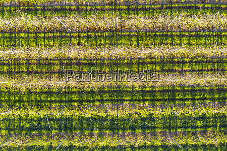 germany, , bavaria, , gaissach, , drone, view, of - 28760222
