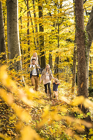 family exploring while walking amidst trees