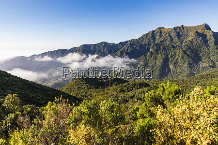 portugal sao vicente forested mountain valley