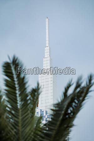 georgia adjara batumi palm tree against
