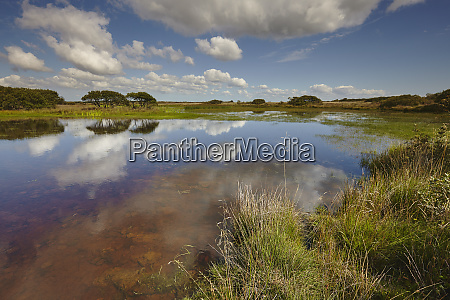 croft pascoe pool on goonhilly down