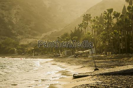 empty beach and palm trees pissouri