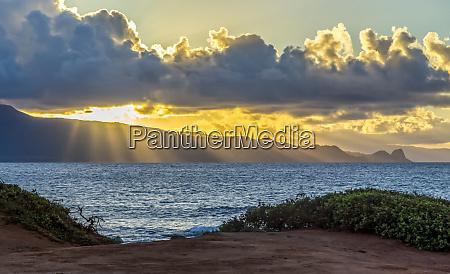 beautiful sunlight rays stream through the