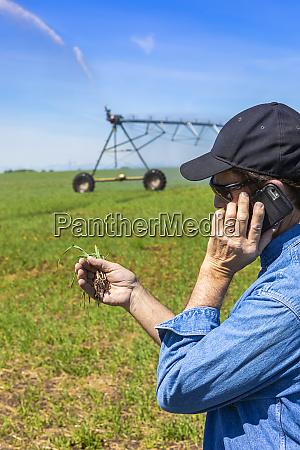 farmer using a smart phone on