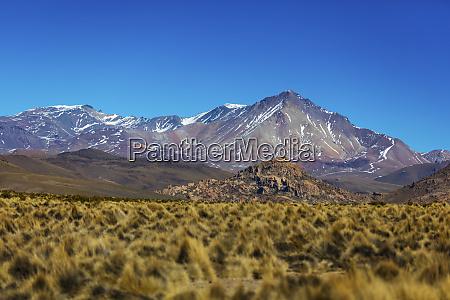 altiplano landscape potosi bolivia