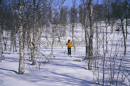 man cross country skiing in vasterbottens