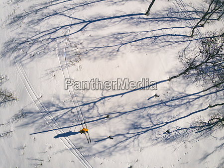 high, angle, view, of, cross-country, skiers - 28792770