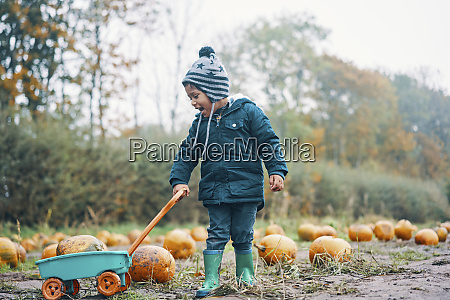a child with a pumpkin in