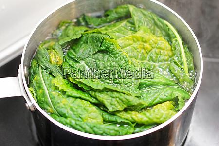 boiling chard