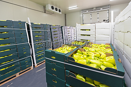 peppers boxes storage