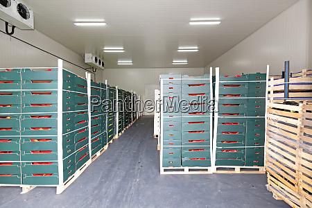 produce pallets