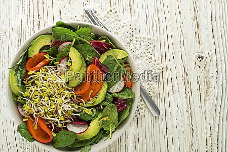 salad alfalfa sprouts