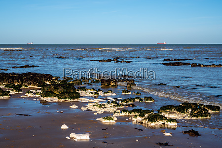 chalk rocks exposed at low tide