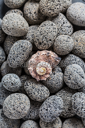 lava stones with seashell as background