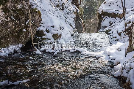 wildbach mit schnee im winter