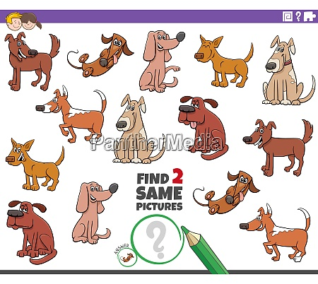 find two same dogs educational task