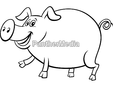 cartoon pig farm animal character coloring
