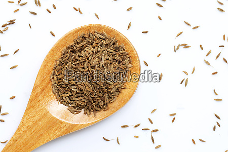 cumin or caraway seeds on white