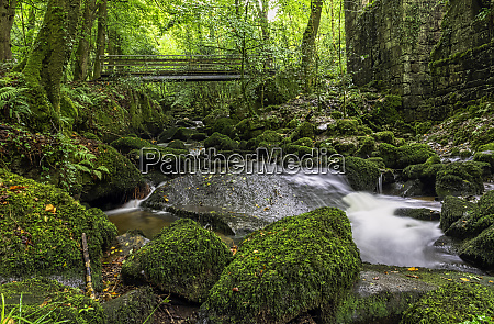 kennall river in kennall vale nature