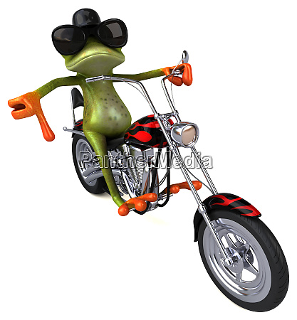 fun frog on a motorcycle