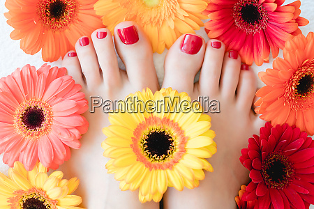 toenails after pedicure with red nail