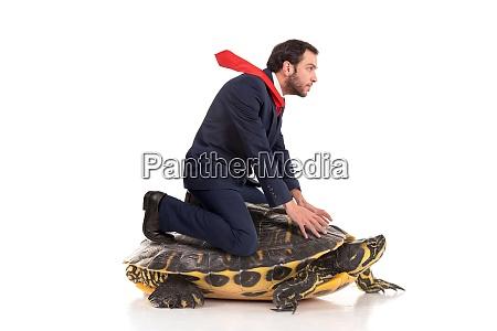 businessman riding a turtle