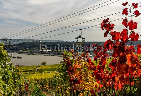 cable car to niederwald monumentand of