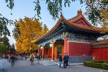 view of autumn colours and souvenir