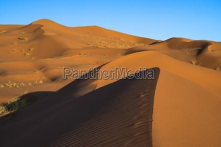sand dunes and blue sky sahara