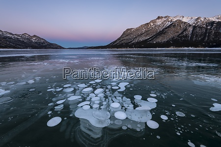 trapped methane bubbles at lake abraham