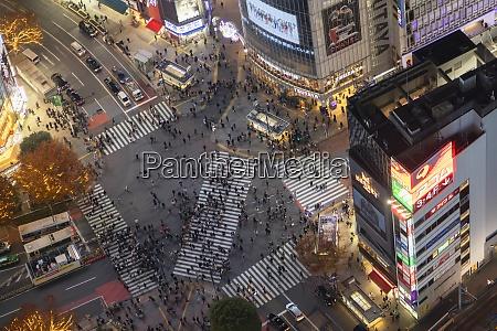 shibuya crossing at night shibuya tokyo
