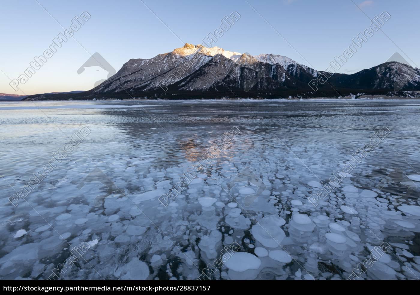 methane, gas, bubbles, at, lake, abraham, - 28837157