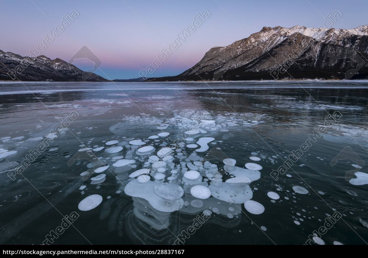 trapped, methane, bubbles, at, lake, abraham, - 28837167
