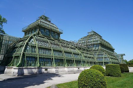 the palm house in the schonbrunn