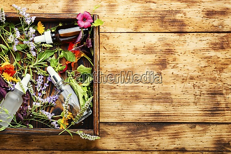 essential oils with herbs and flowers