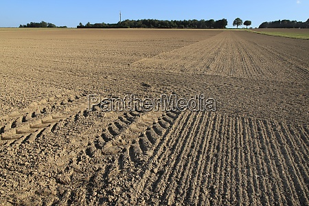 agricultural desert ploughed arable in autumn